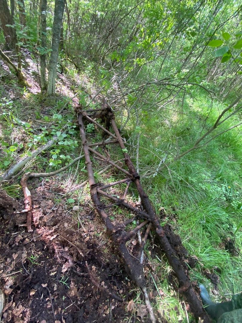 В Тверской области нашли место падения советского бомбардировщика